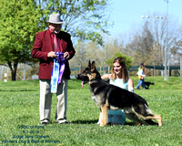 GSDC of Reno AM Show Winner's Dog and BOW Paragon's Spend Away